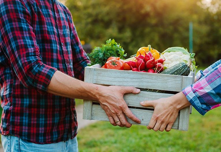 Dostava sadja zelenjave priložnost za rast nov poslovni model spodbujanje lokalnega gospodarstva